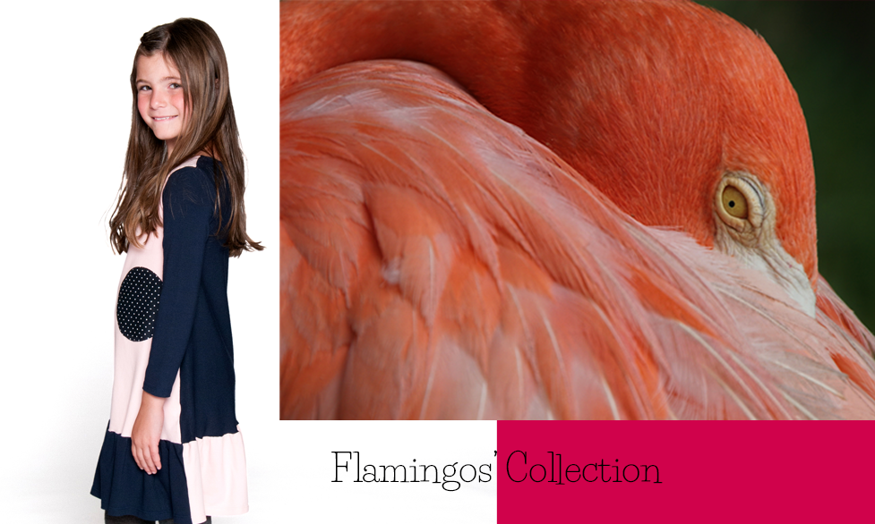 Dress Flamingo Collection